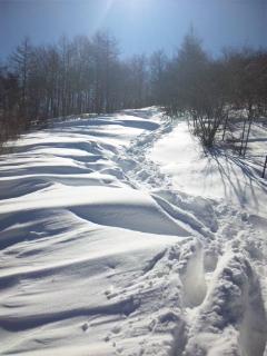 雪登山道.jpg