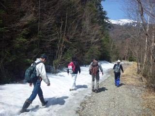 110506林道残雪.jpg