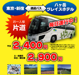 bus_tours_section201110.jpg