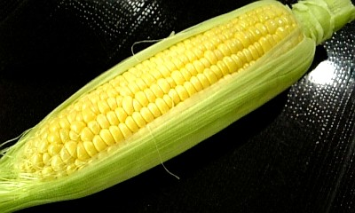 corn080824.jpg