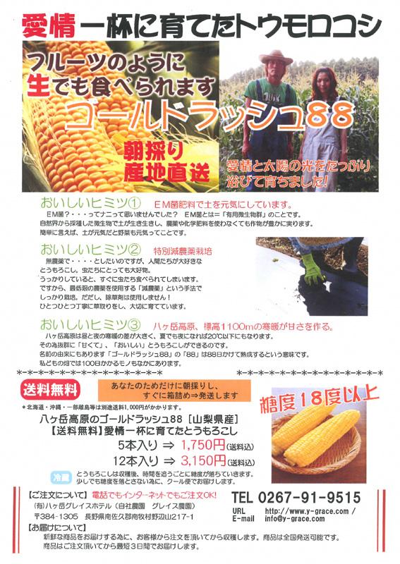 corn2010.jpg