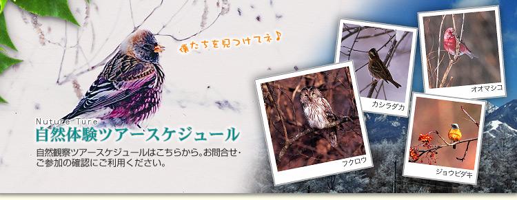 keyVisual-schedule_winter.jpg