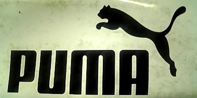 puma2090211.jpg