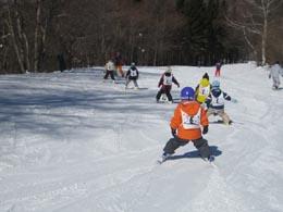 skiski.jpg