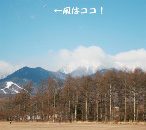 takoage1.jpg