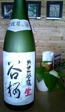 tanizakura100201.jpg