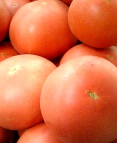tomato080811.jpg