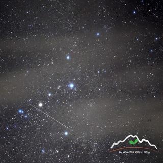 web-Star-3.jpg