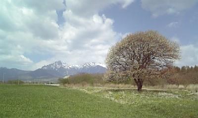 yamanashi090514.jpg