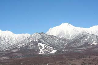 yatsu2011.jpg
