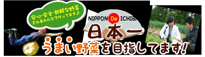 日本一うまい野菜を目指しています!